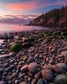 Cobble Beach Sunrise