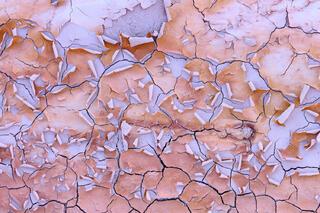 Prairie Paint Cracks