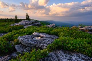 June Vista from Bear Rocks Preserve.