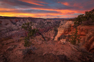 Above Zion Canyon