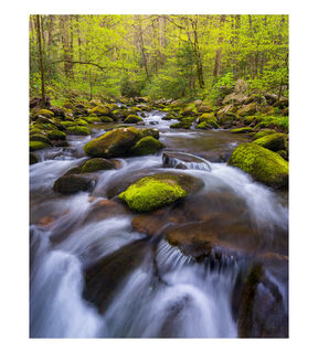 Spring on the Roaring Fork