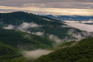 Morning fog after sunrise.