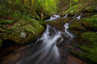 Rose River Falling Cascades