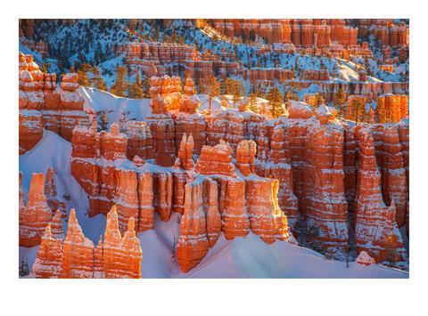 Snow Castles