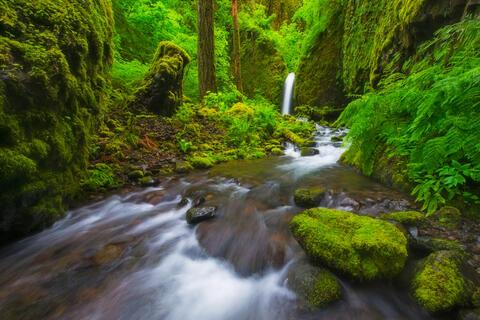 Streams & Waterfalls Fine Prints For Sale