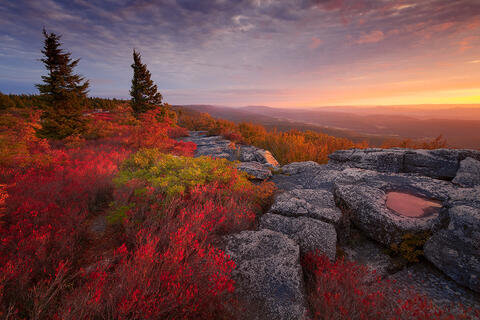 West Virginia Highlands Autumn Workshop - October 1-5, 2021 - Sold Out