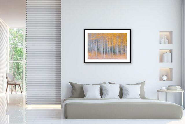 Framed Fine Art Print - Limited Edition of 100