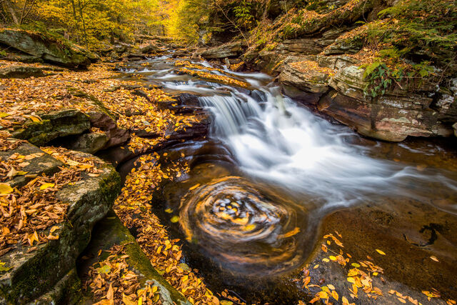 Swirling into October