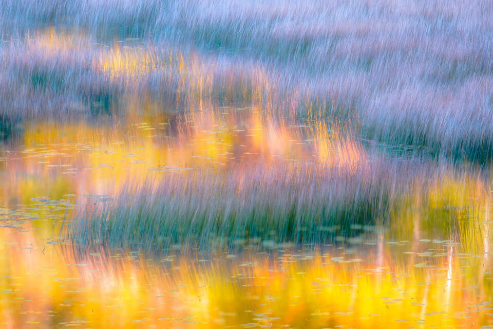 Autumn reflections in the tarn in Acadia National Park.