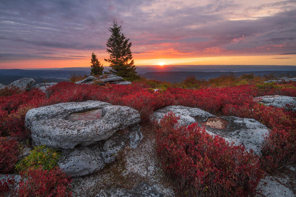 Autumn sunrise from Bear Rocks Preserve in the Dolly Sods Wilderness of West Virginia.