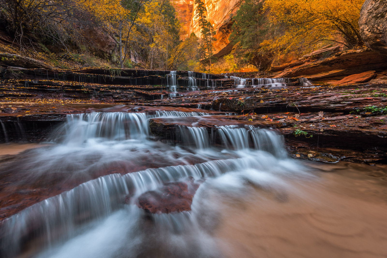 These magnificent waterfalls are located in a remote canyon in Zion National Park.