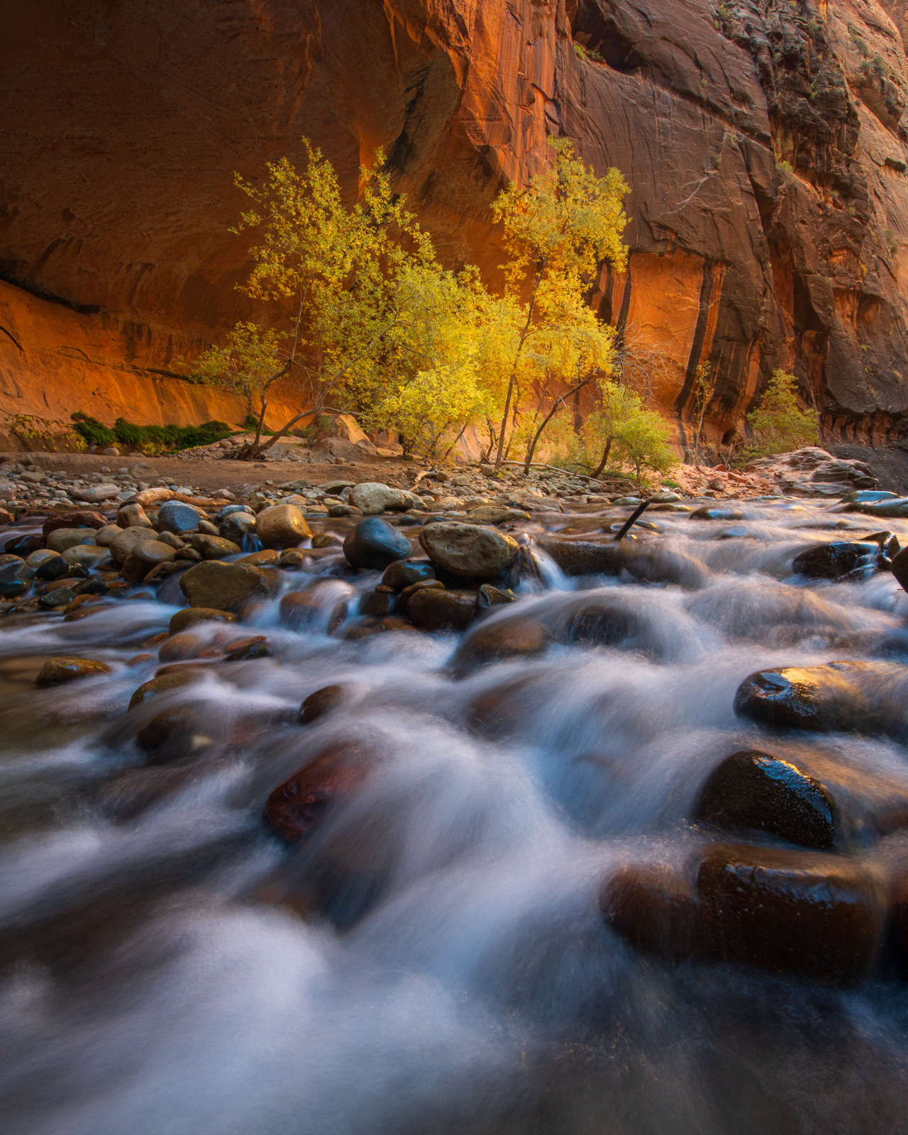 Fall, Landscape, art, autumn, beautiful, canyon, color, colorful, dramatic, epic, fine art, for sale, glow, glowing, hike, light...