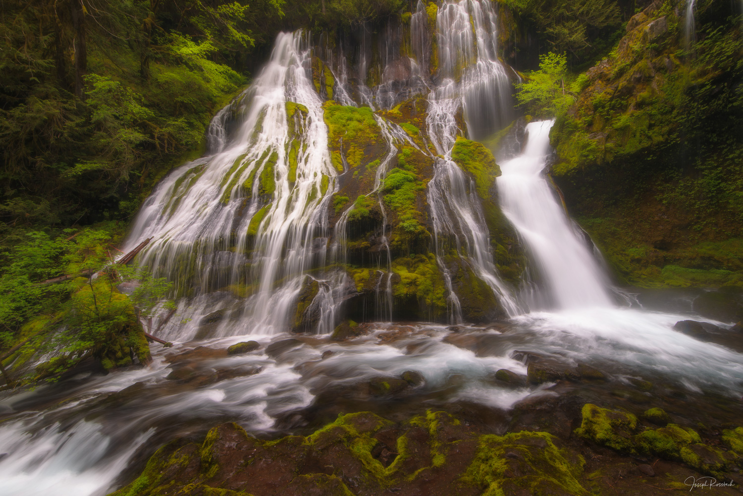Spring waters flowing down Panther Creek Falls  a 130-foot (40 m) waterfall on Panther Creek in the Wind River Valley in Skamania...