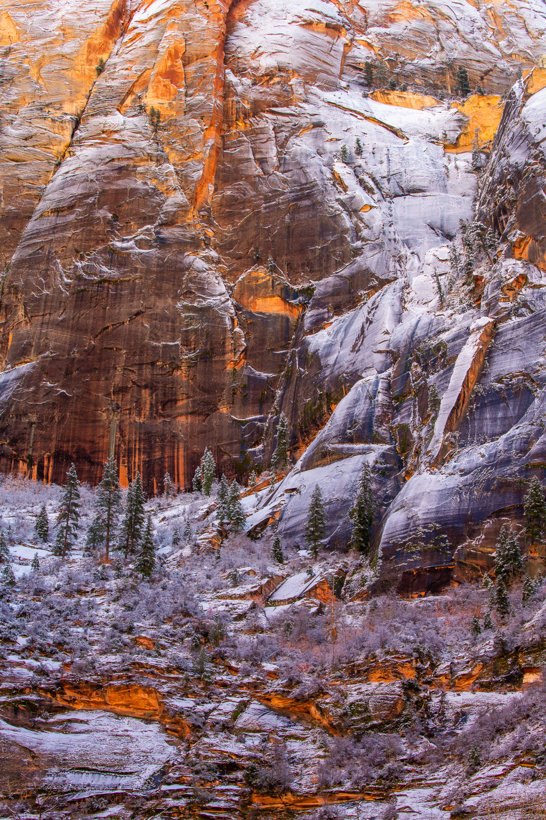 Snow blankets the walls of Echo Canyon after Zion's first winter snowfall of 2019.