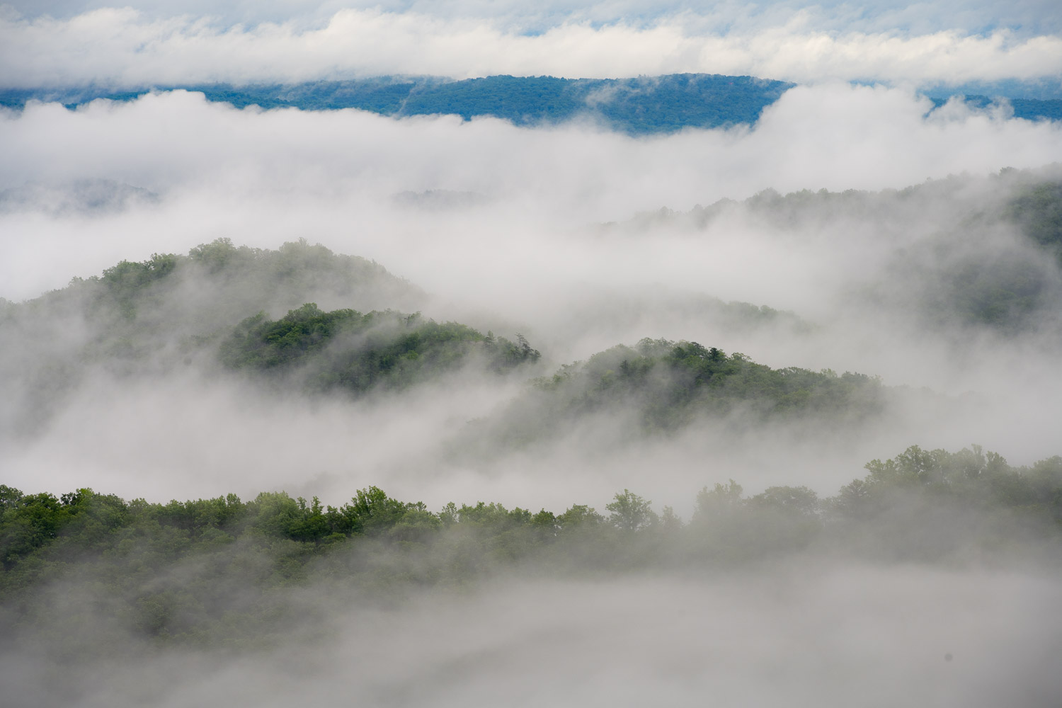 Layered mountain ridges and morning fog from Skyline Drive in Shenandoah National Park, Virginia