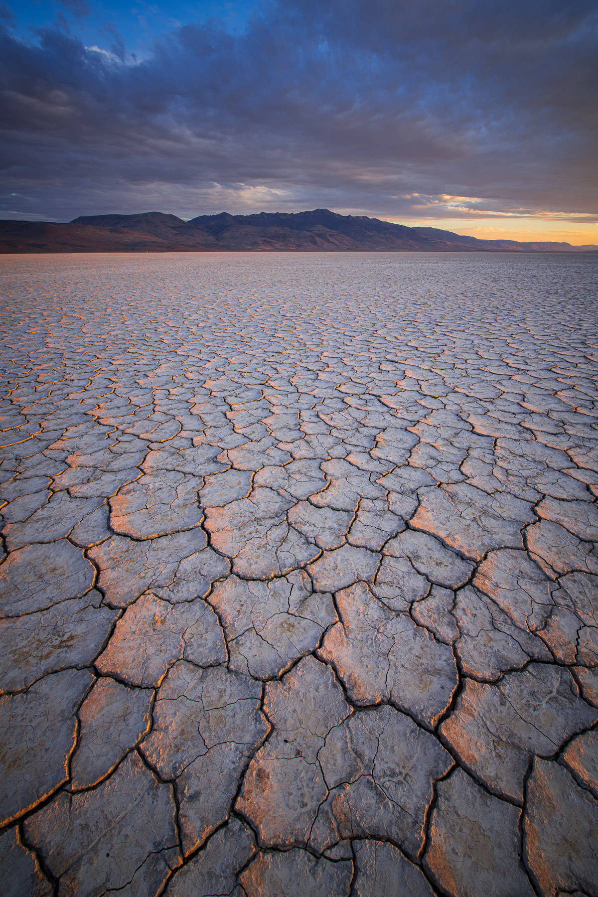 Mud cracks below Steens Mountain from the Alvord Desert, Oregon