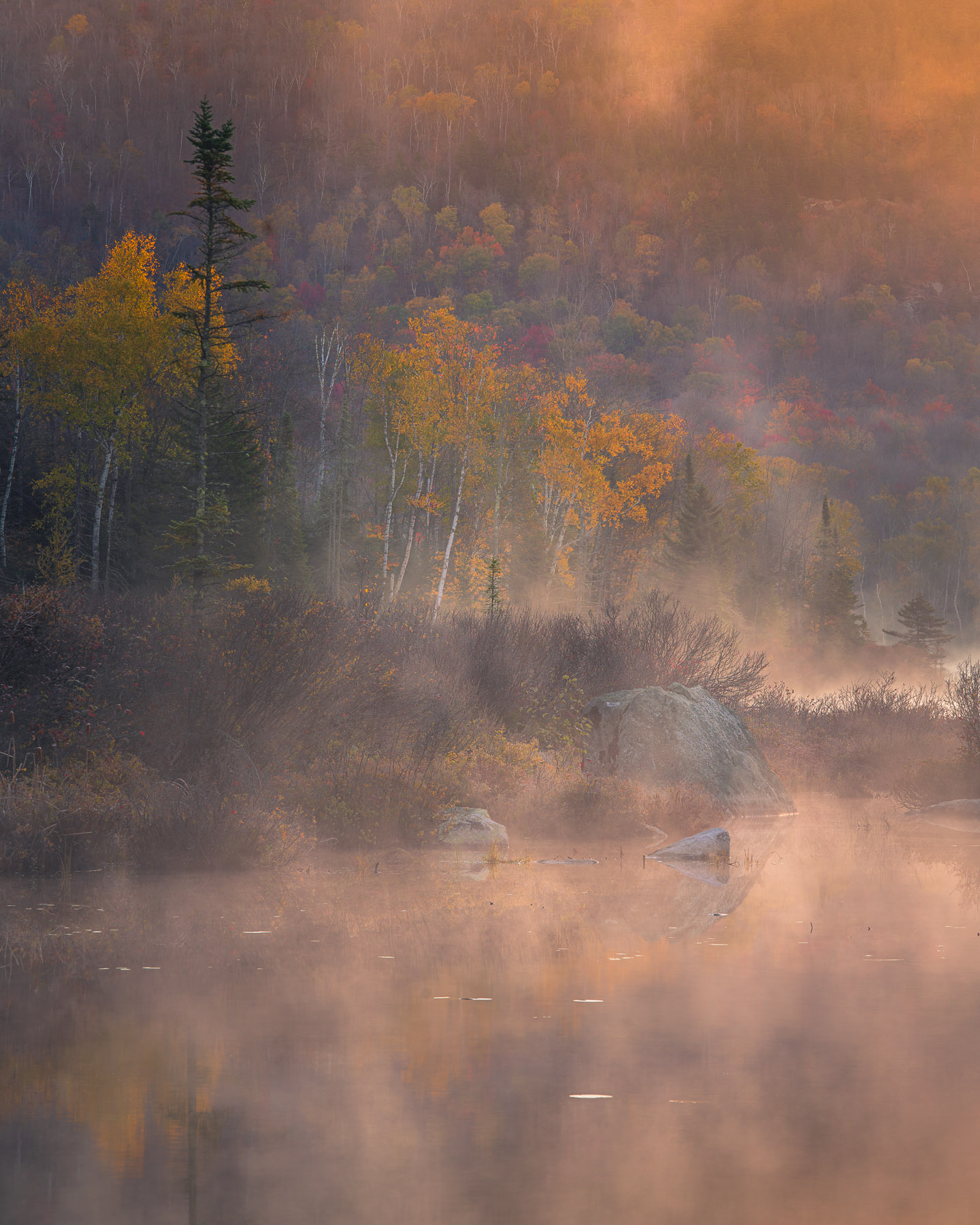 Autumn color and morning fog on Turtlehead Pond Pond, Vermont.