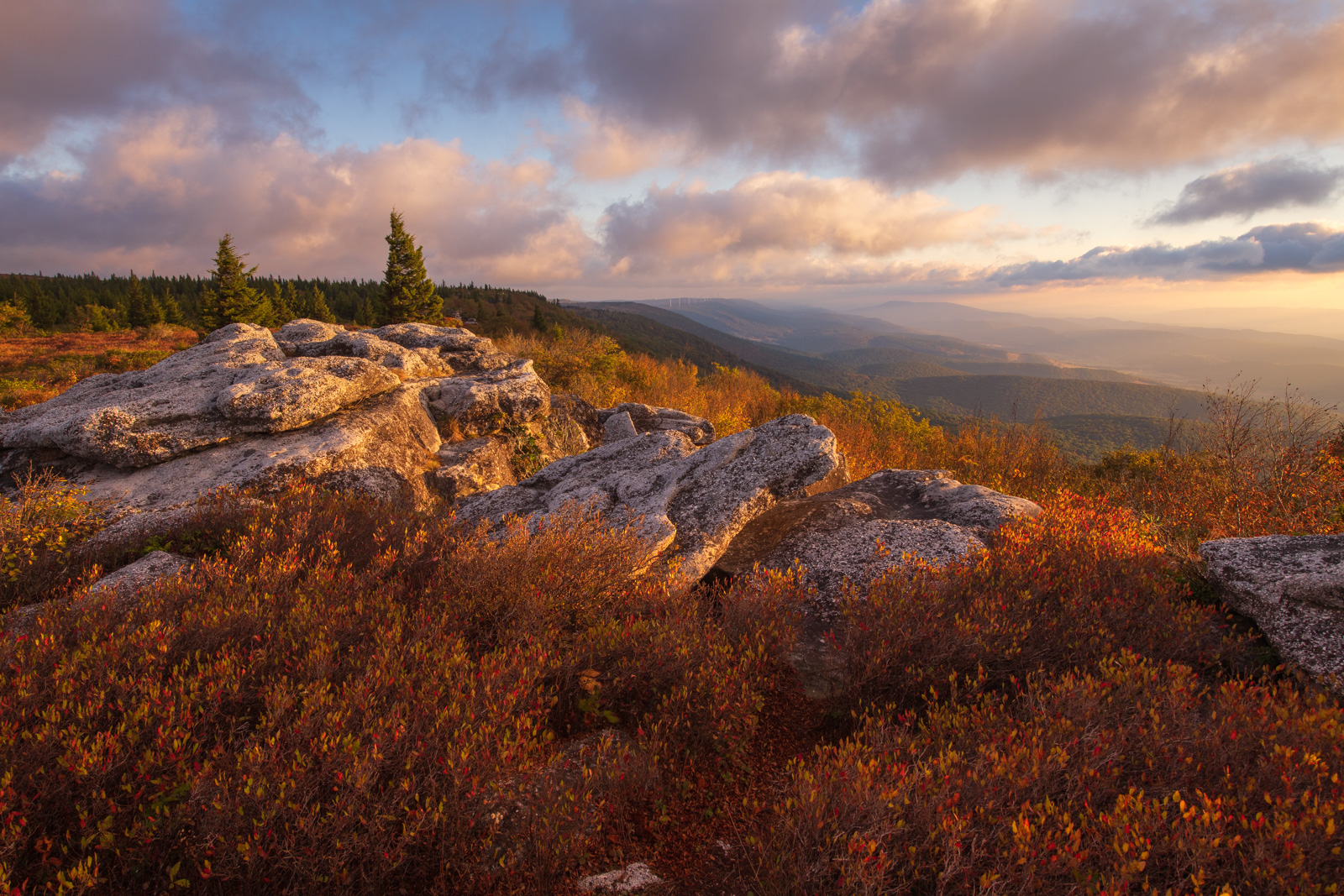 Early autumn color on Bear Rocks as summer transitions into fall in the West Virginia Highlands.Add beauty to your space with...