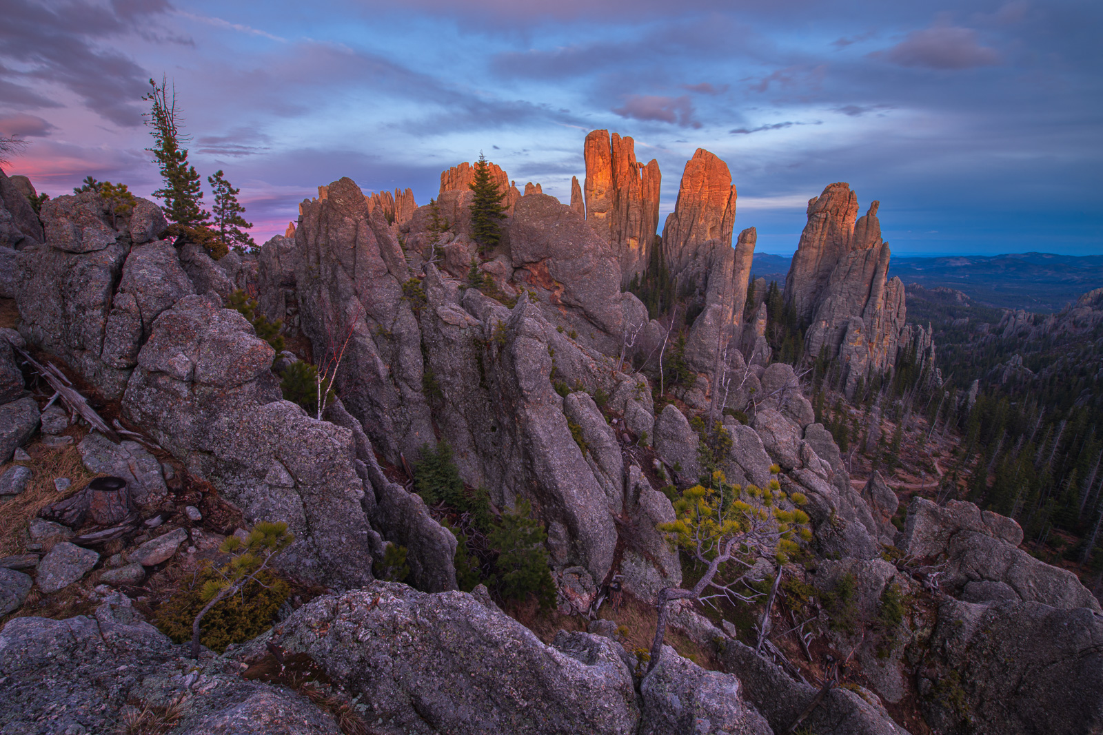 The Cathedral Spires, located in the Black Hills, glow at sunset. The Cathedral Spires and Limber Pine Natural Area, a 637-acre...