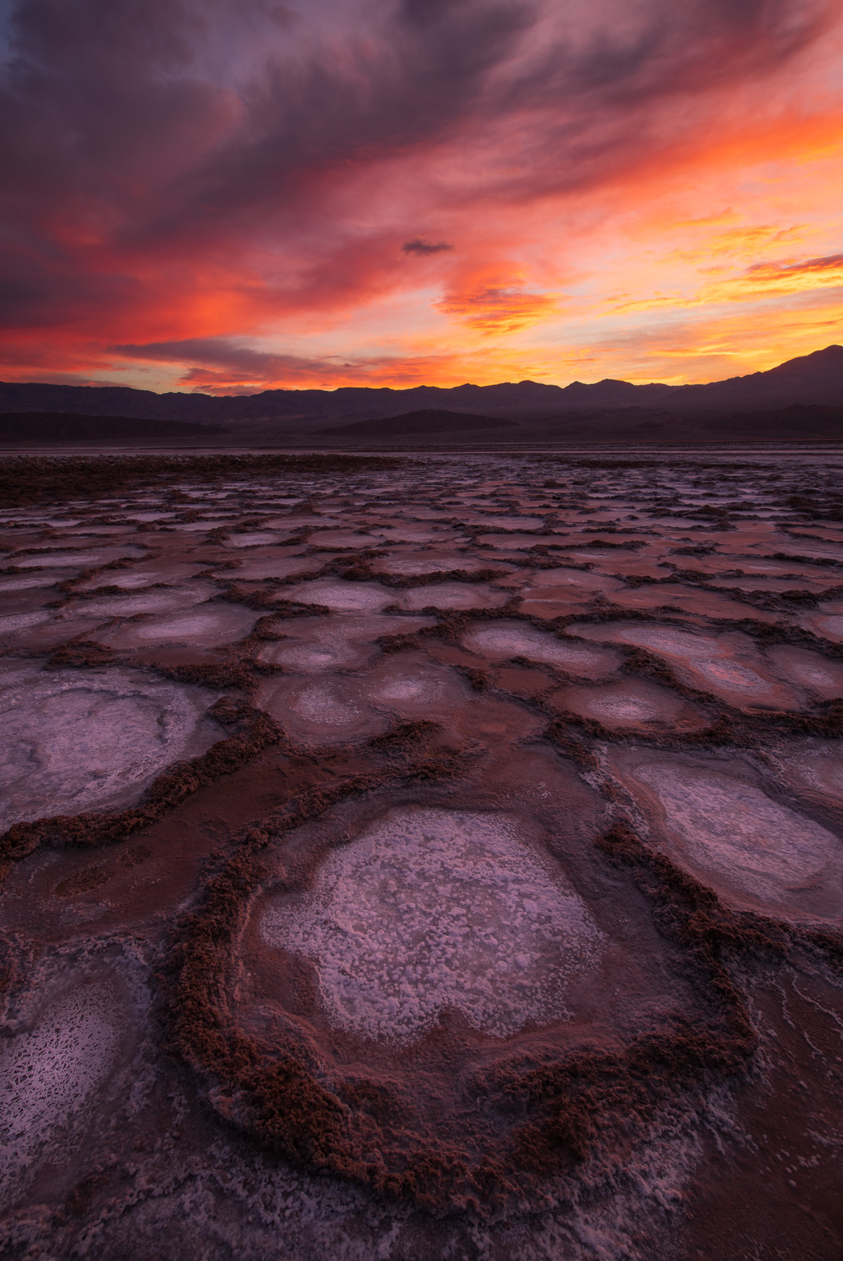 Salt formations at sunrise from Cottonball Basin, Death Valley National Park, California