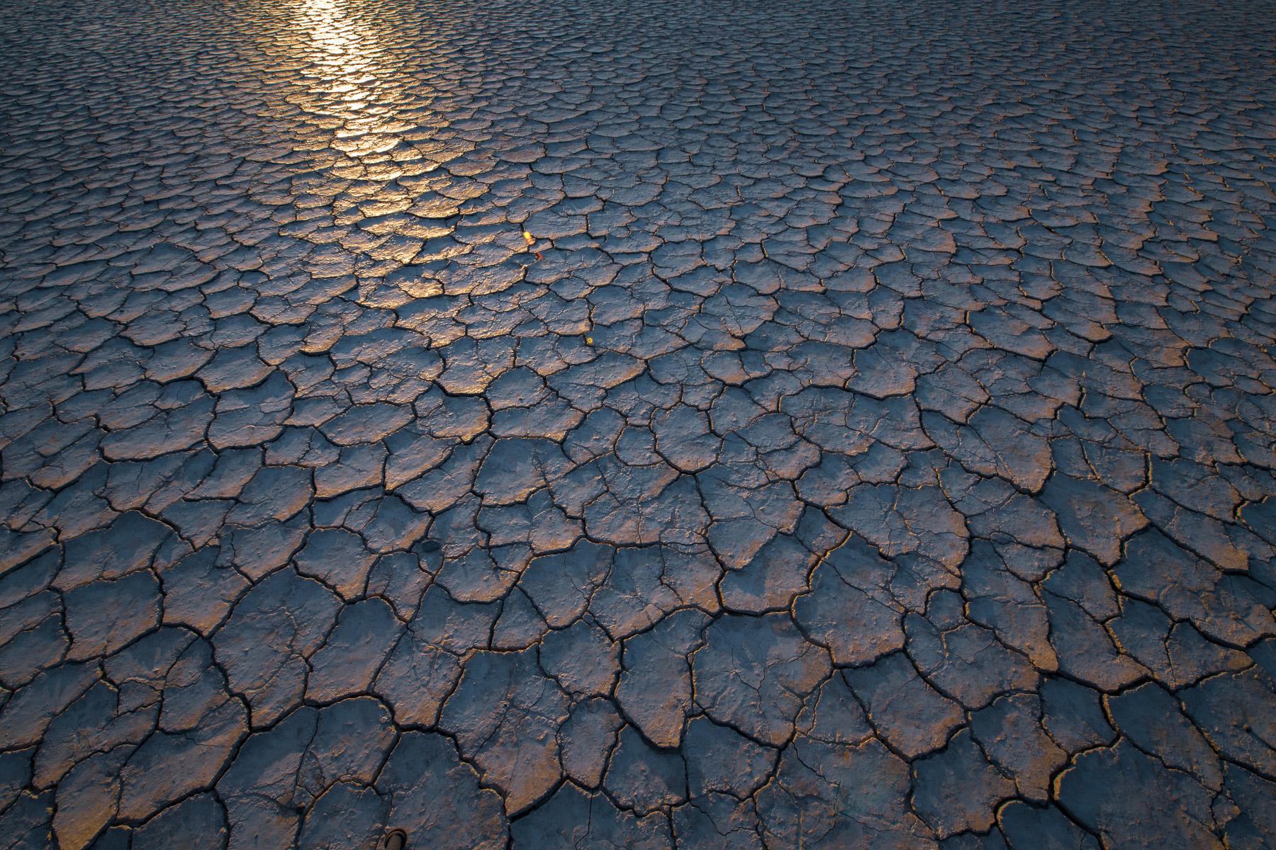 Cracked mud patterns on the Alvord Desert, Oregon.