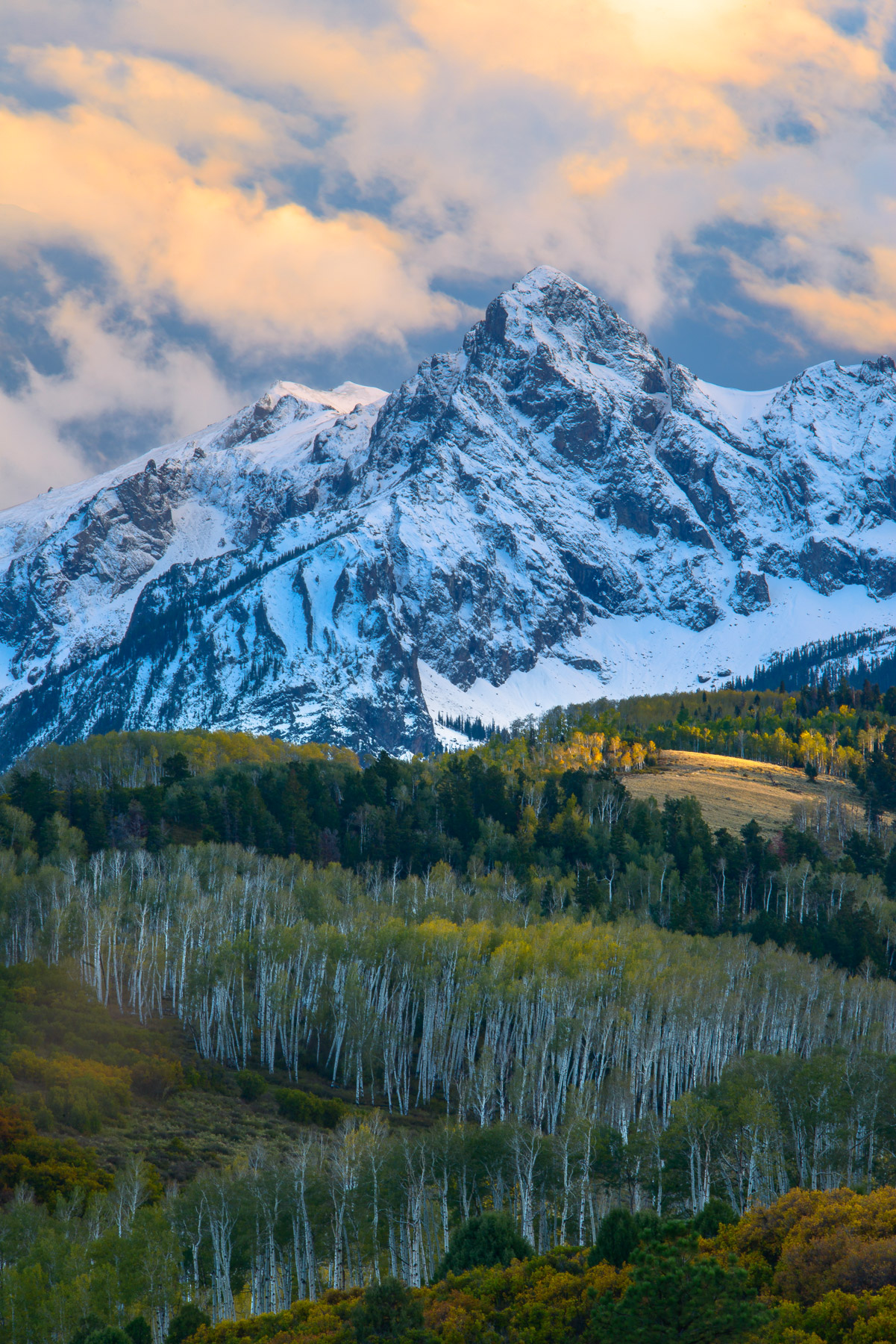 Rugged peaks with fresh snow and autumn Aspens from Dallas Divide, San Juan Mountains, Colorado. Available Print Sizes: 12x18...