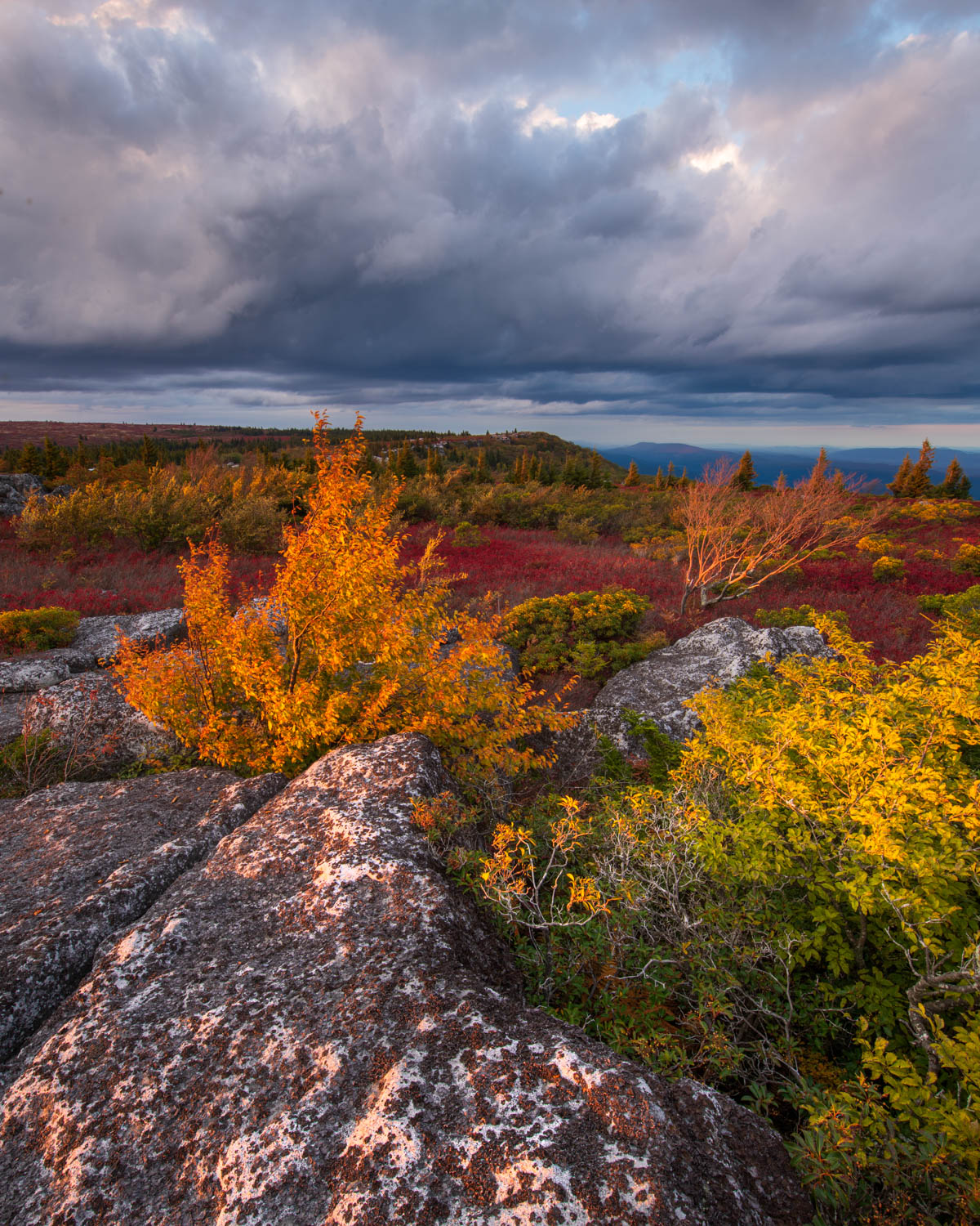 A dramatic sunset from the Dolly Sods Wilderness in West Virginia.