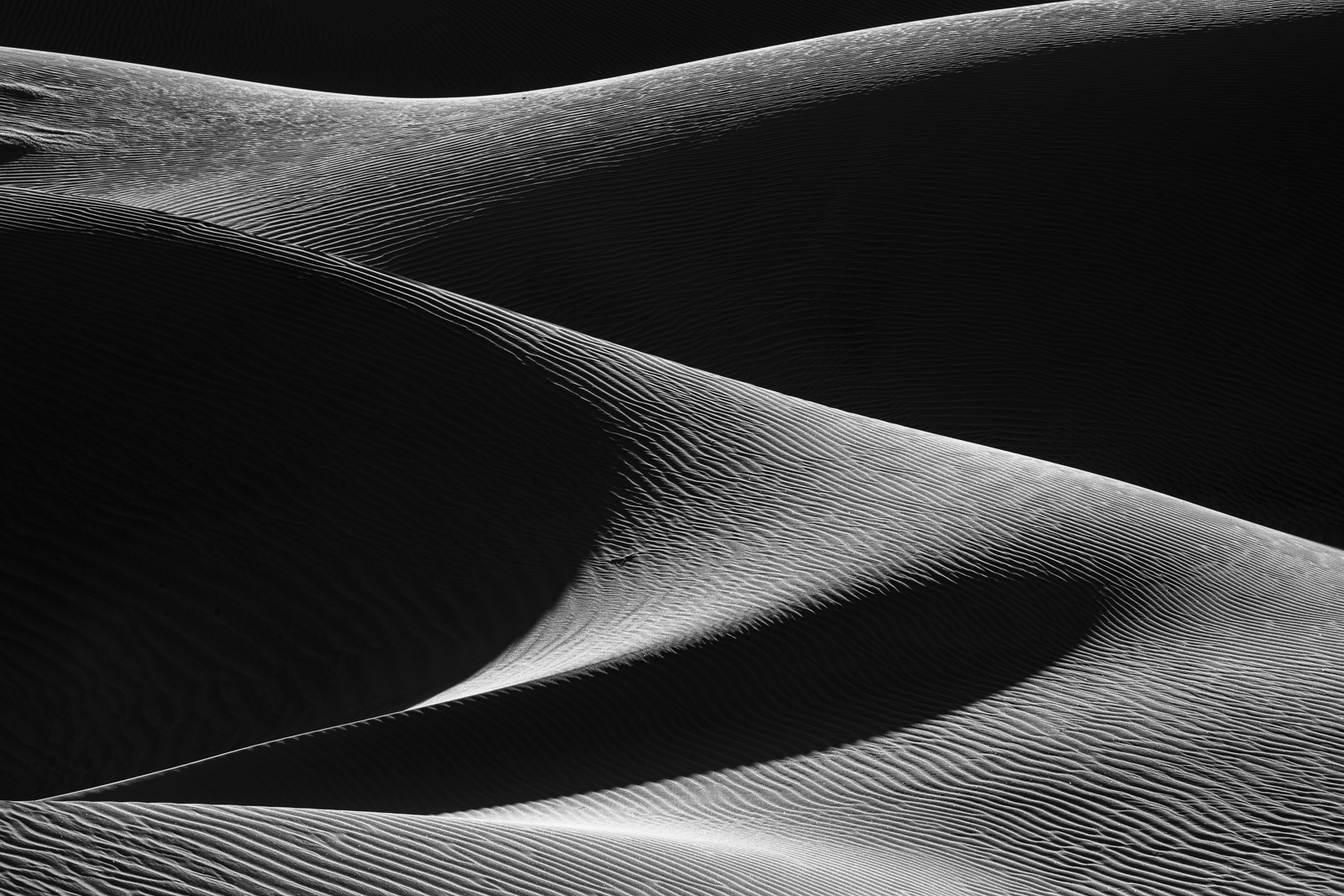 Play of light and shadow in the Mesquite Dunes of Death Valley National Park, California