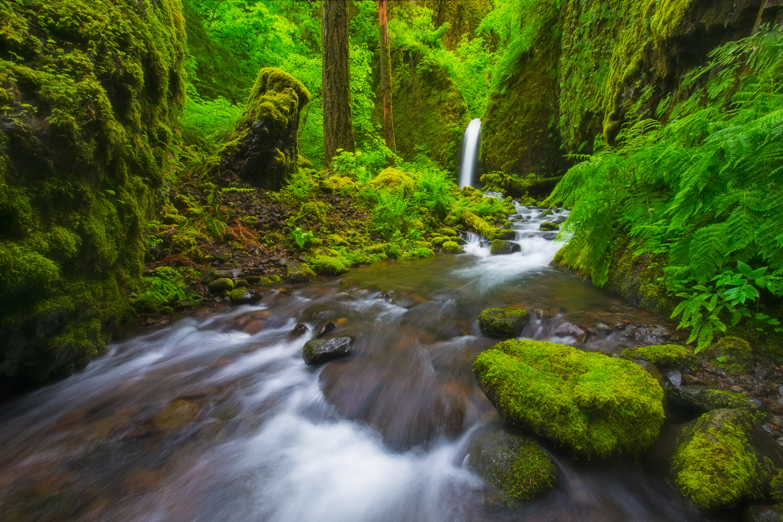 A remoye and unmarked waterfall in the backcountry of the Columbia River Gorge, Oregon. This waterfall was destroyed by the wildfires...