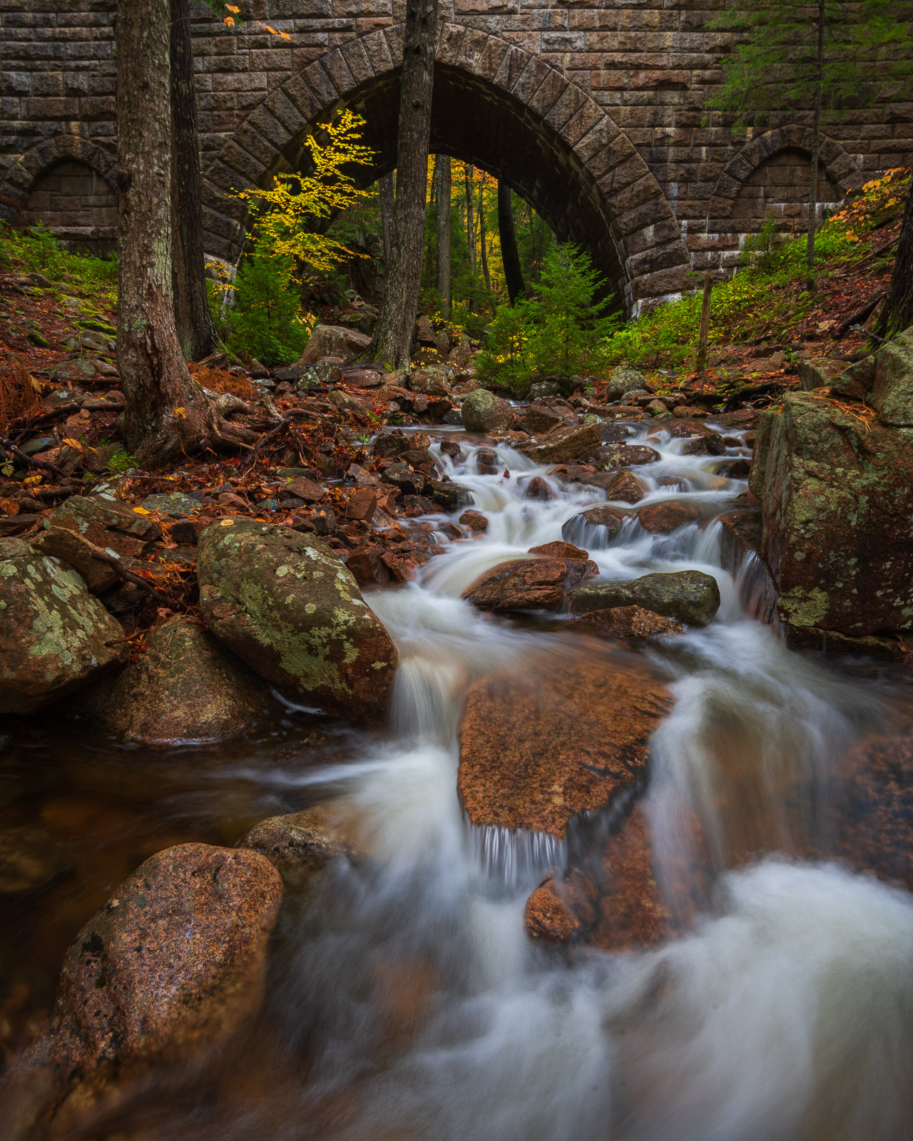 Autumn along Hadlock Brook with one of the parks iconic Carriage Road Bridges seen in the background.
