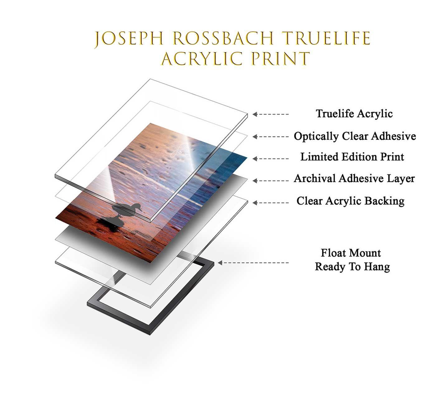 Acrylic Fine Art Print Detail