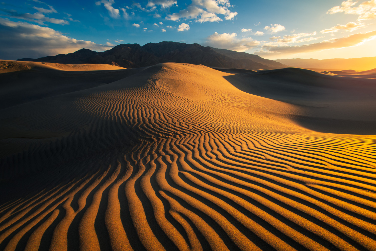 A dramatic display of light and shadow at the Mesquite Sand Dunes, Death Valley National Park, California.