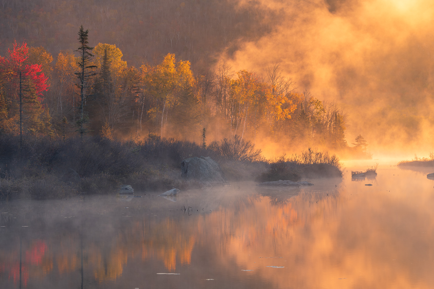 First light paints the rising mist of this scenic pond in the Northeast of Vermont.