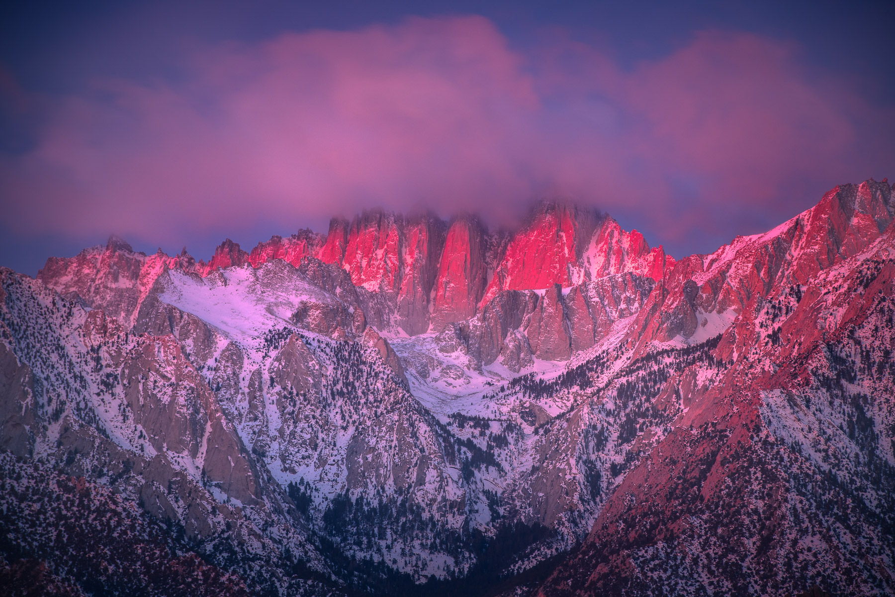 Mount Whitney, the tallest peak in the contigous United States, glows in pink alpenglow light on a cold winter monring, Eastern...
