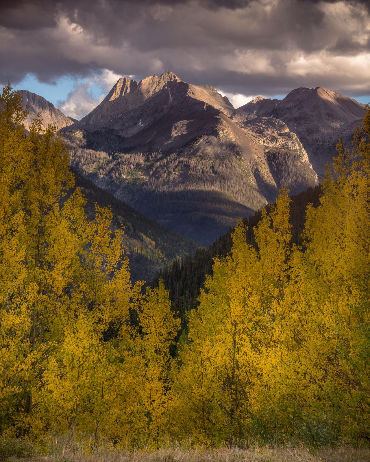 The Needle Mountains and autumn aspens, San Juan Mountains, Colorado.