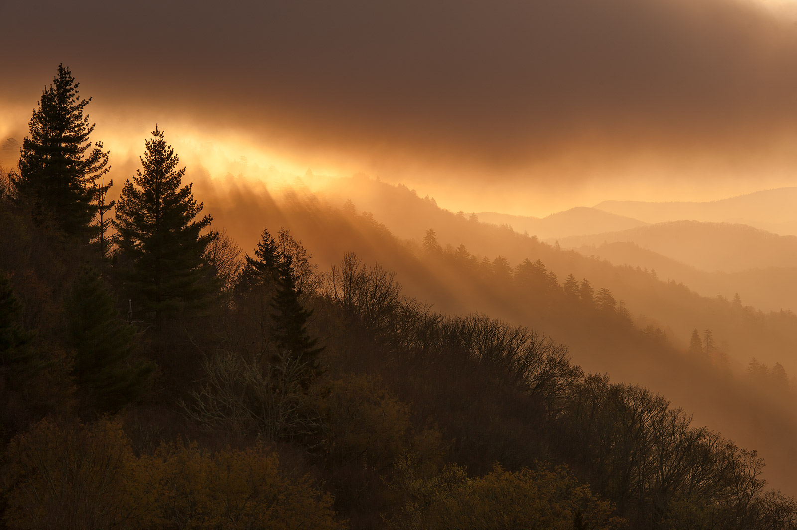 Breaking light and misty layers from the Oconaluftee Overlook on the North Carolina side of Newfound Gap.