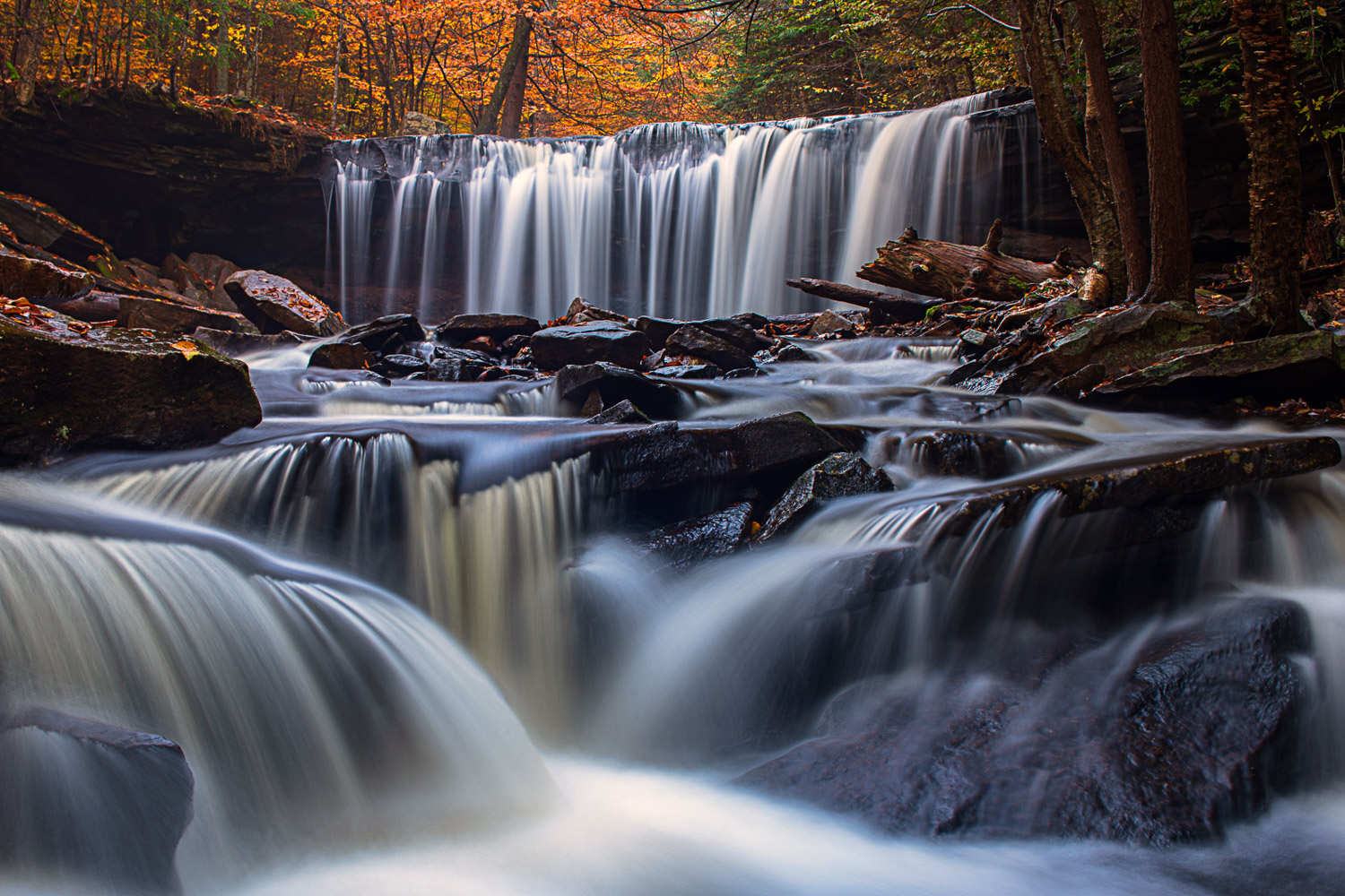 Autumn at Onieda Falls in Ricketts Glen State Park.