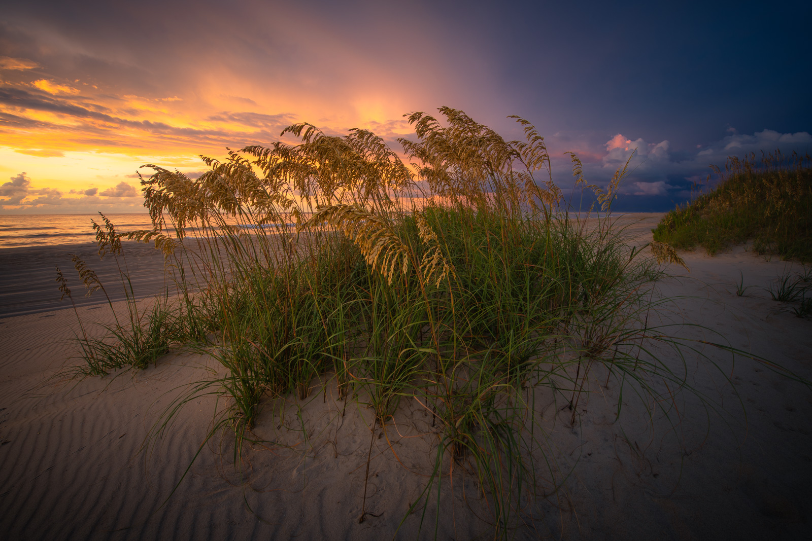 Sunrise over the Atlantic Ocean with dunes and grass along the Outer Banks.