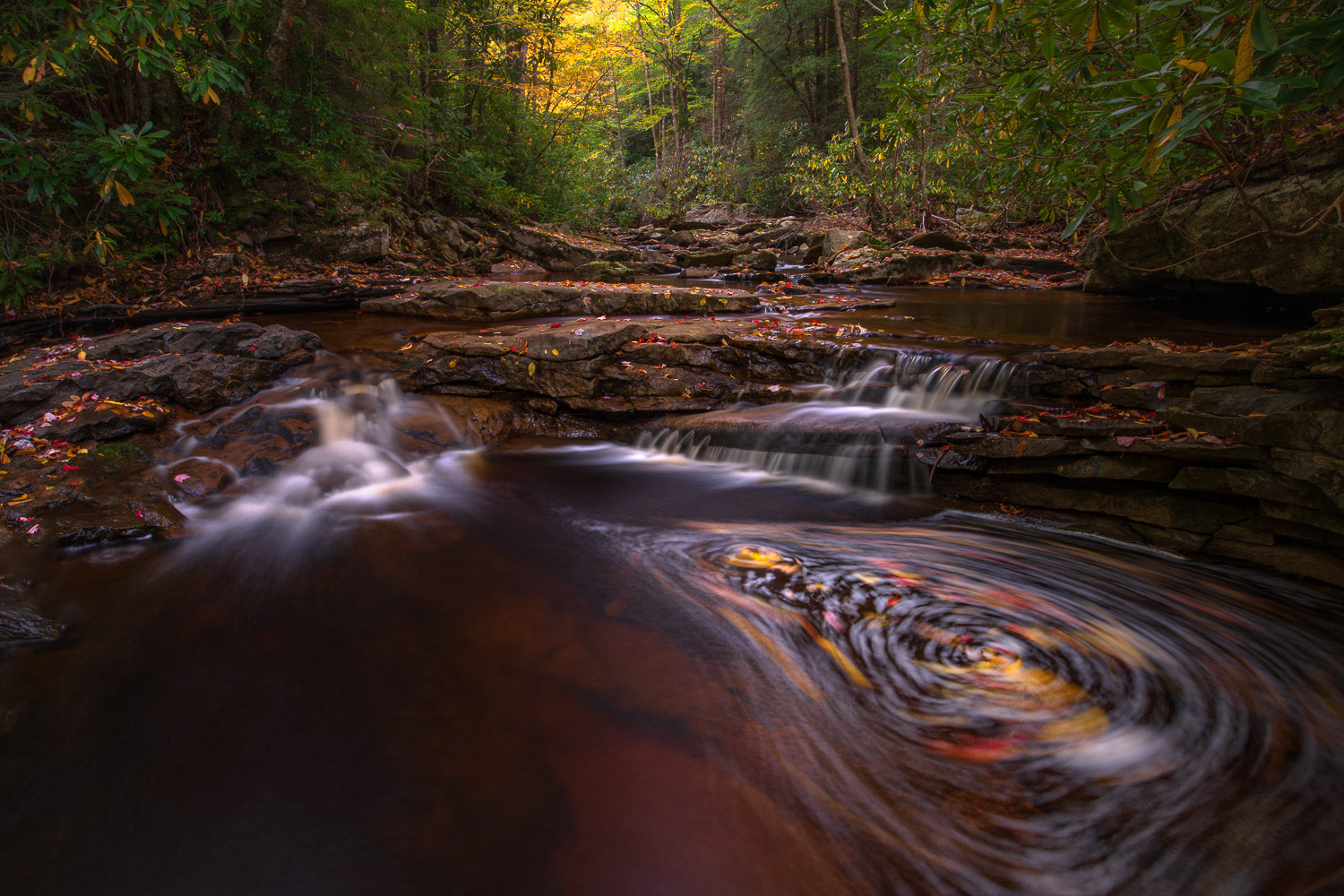 Swirling leaves in Red Run captured with a long exposure for creative abstract effect.