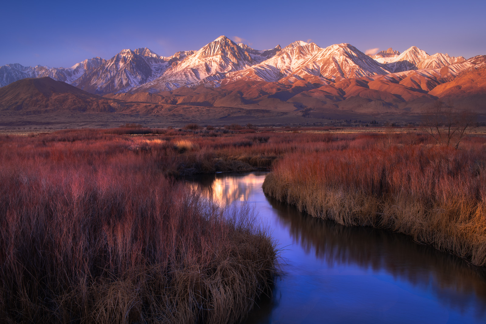 First light on the Sierra Nevada Mountains reflects in the Owens River, California.
