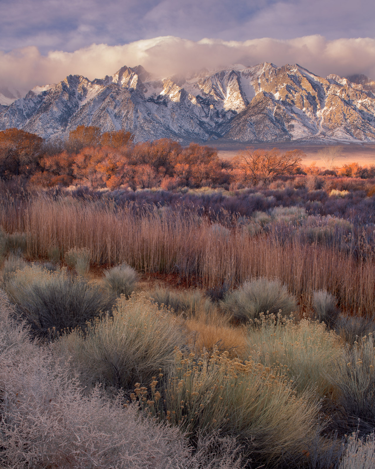 Multi-colored layers below the Sierra Mountains from the Owens Valley.