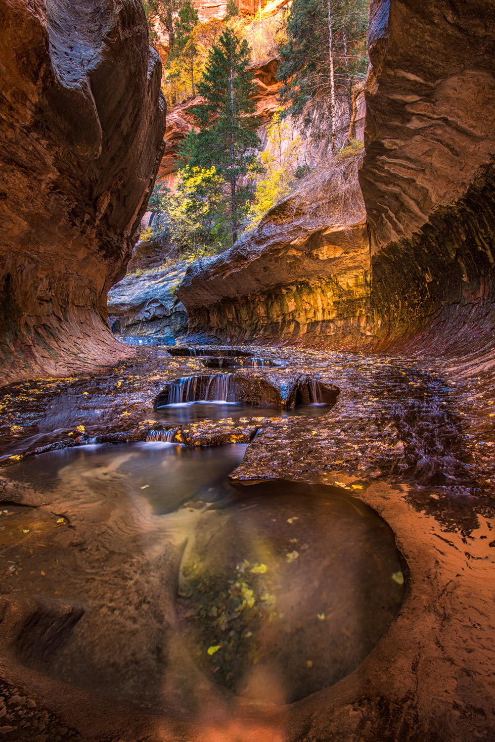 Autumn color adorns the Subway in Zion National Park, Utah.