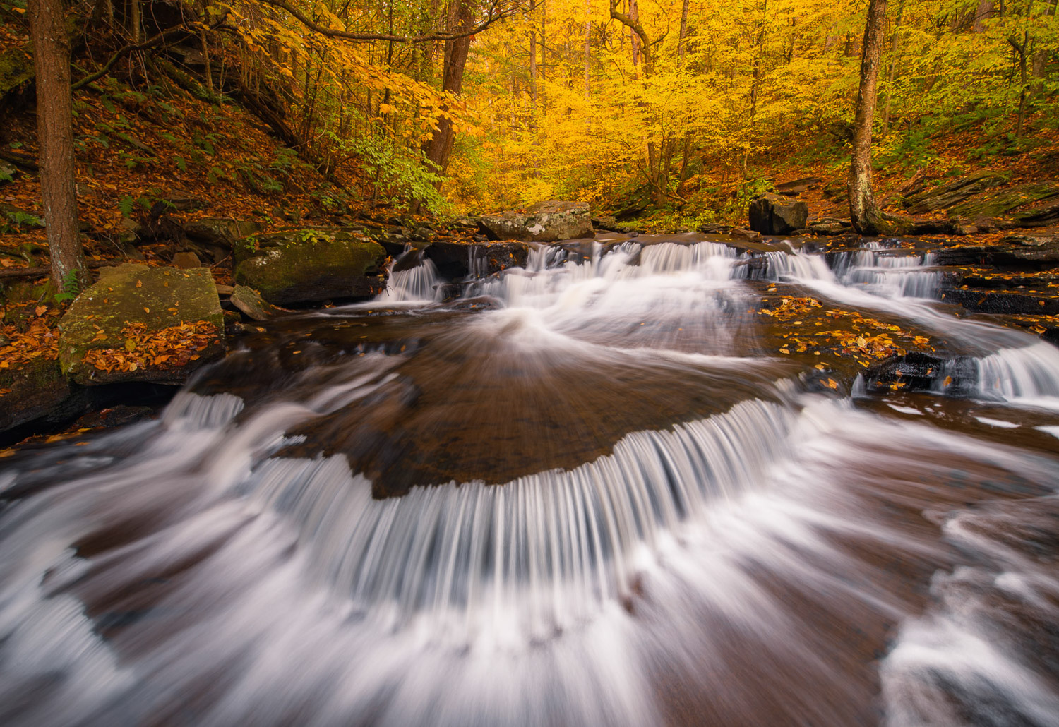 Small cascades and autumn color on Glen Leigh in Ricketts Glen State Park.