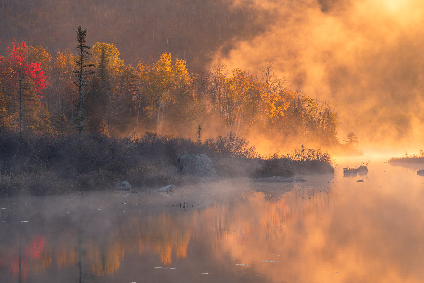 Morning fog illuminated by the first rays of light, Turtlehead Pond, Vermont.