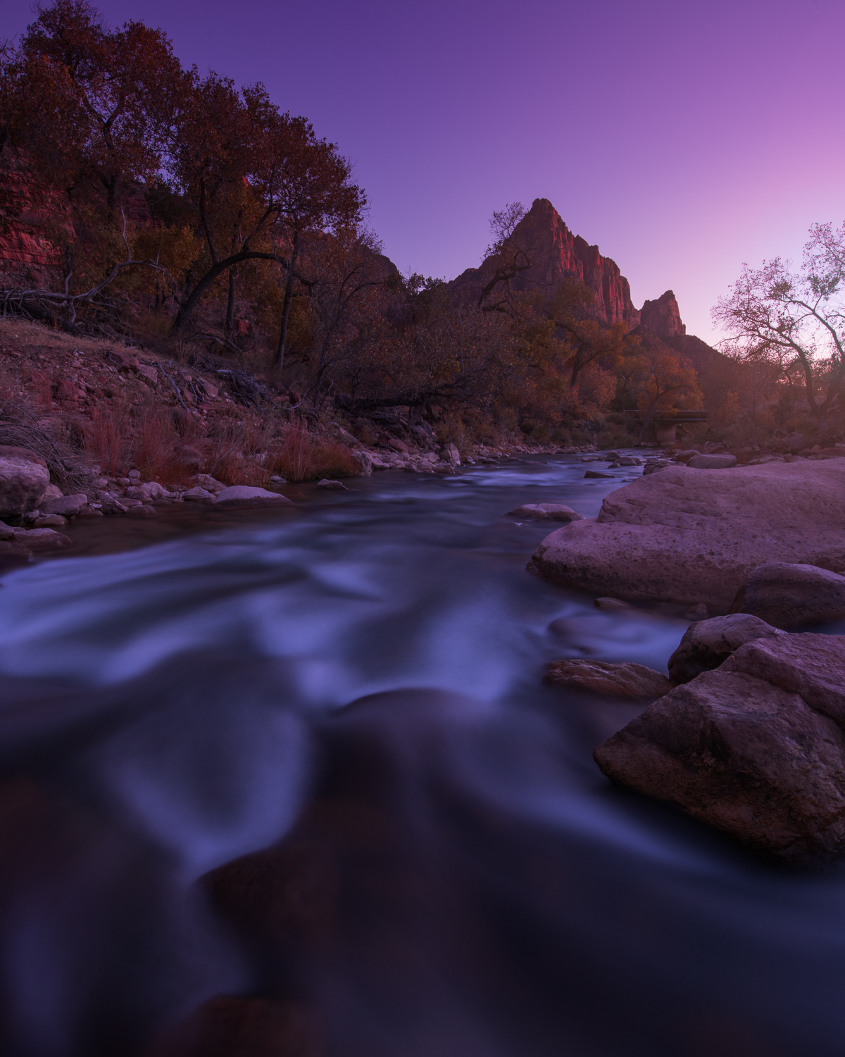 The Virgin River flows below the Watchman at twilight in Zion National Park.