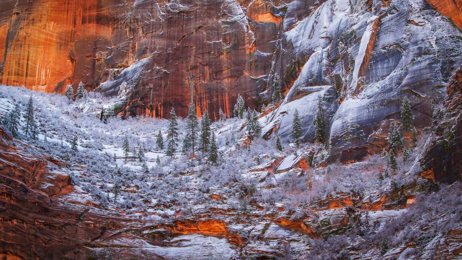 Snow and frost blanket Echo Canyon in Zion National Park. Available Print Sizes: 8x16, 12x24,15x30,20x40,30x60Limited Edition...